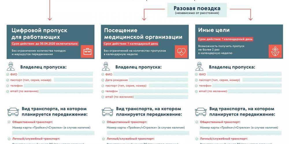 Могут ли иностранцы оформить пропуск для поездок по Москве и области?